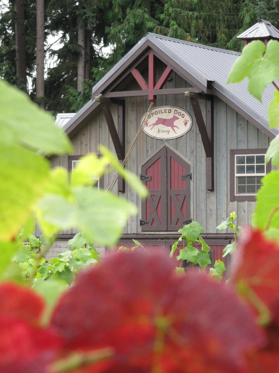 Spoiled Dog Winery Tasting Room near Langley, Washington on Whidbey Island located in the Puget Sound